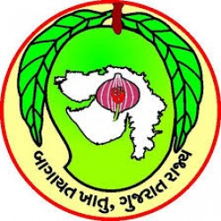 Gujarat Horticulture Mission Field Consultant and Technical Assistant Recruitment 2019