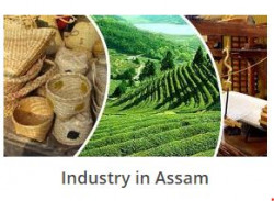 Industries and Commerce Assam Recruitment 2020 245 Enumerator Posts