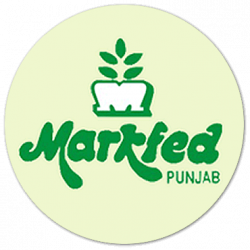 MARKFED Punjab Recruitment 2021: Assistant Accountant, Sales/ Field Officer, Salesman Online Form
